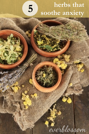 These 5 herbs can help soothe anxiety during stressful times.