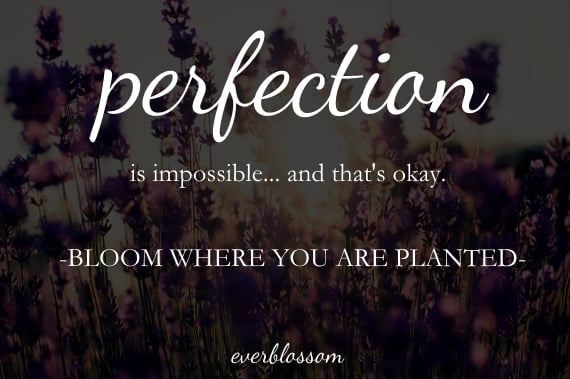 Perfection is impossible... and that's okay!