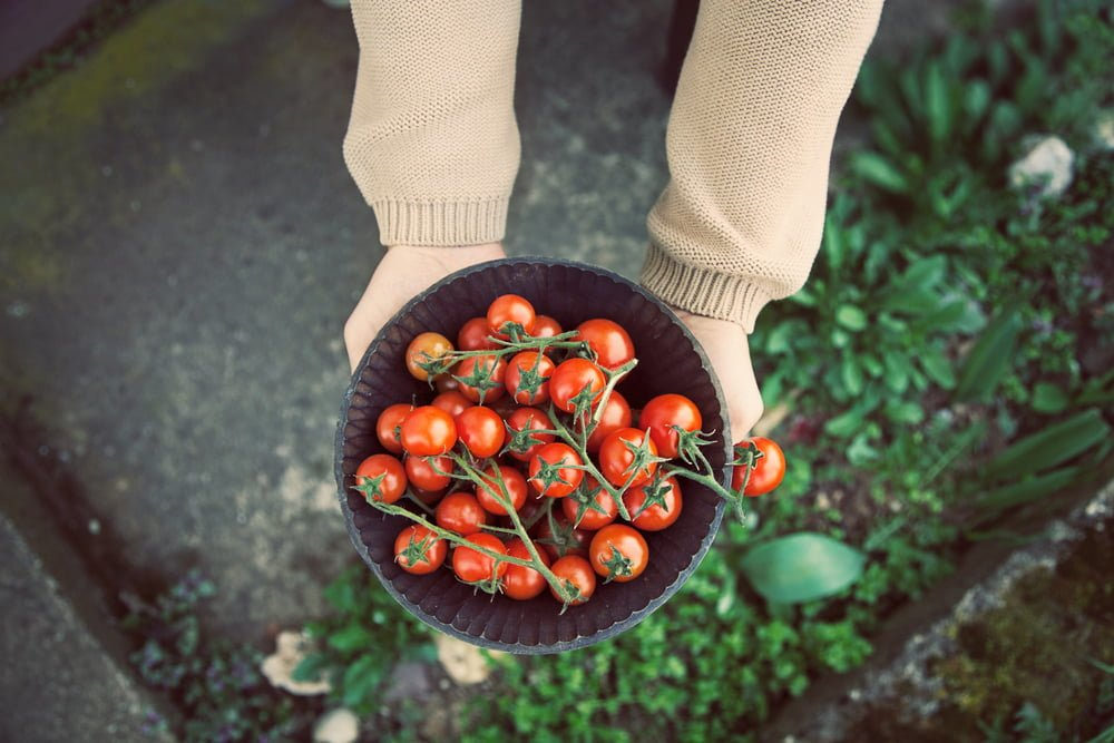 Want to save money on organic food? Try these tips.
