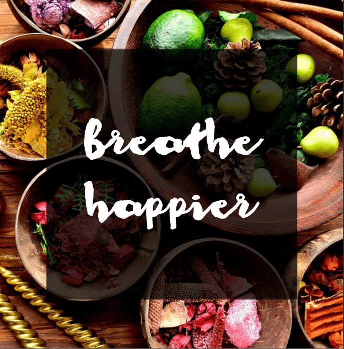 Breathe happier! Nature provides everything we need for beautiful aromas in the home. Ditch the bronchial irritants and check out these tips for a naturally fresh home.