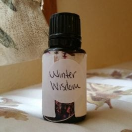 Winter Wisdom essential oil blend ❄️ Perfect scent + benefits for this time of year!