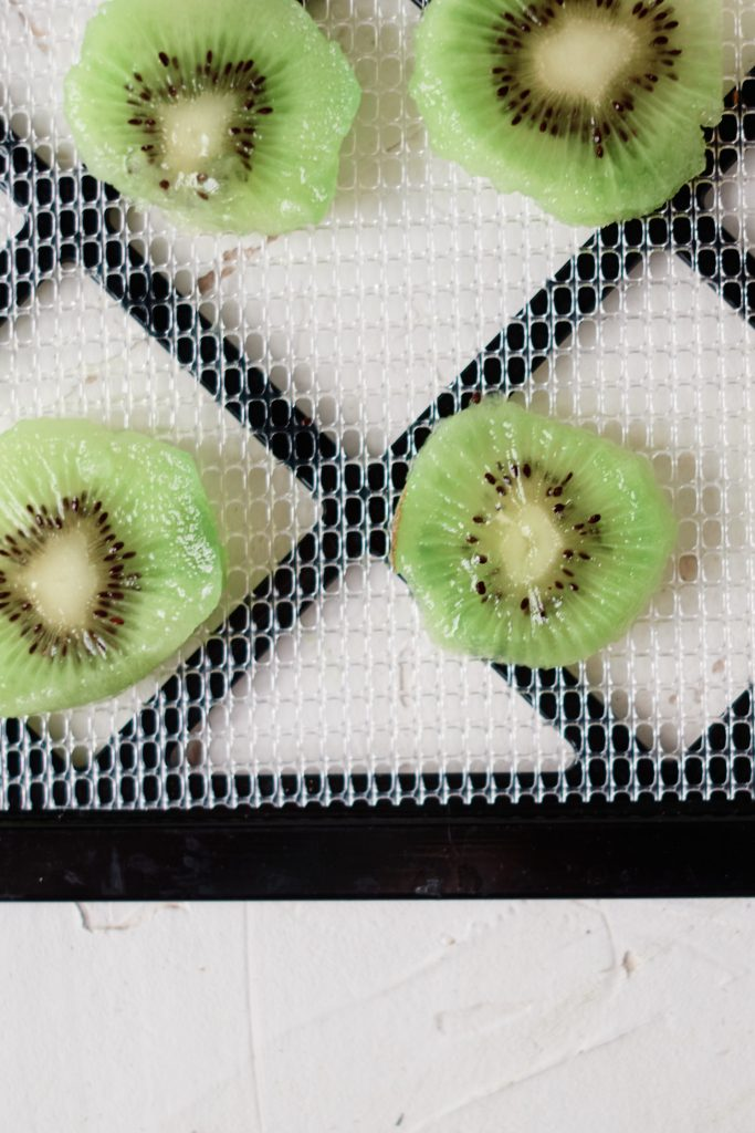Sliced kiwi arranged on a dehydrator tray.