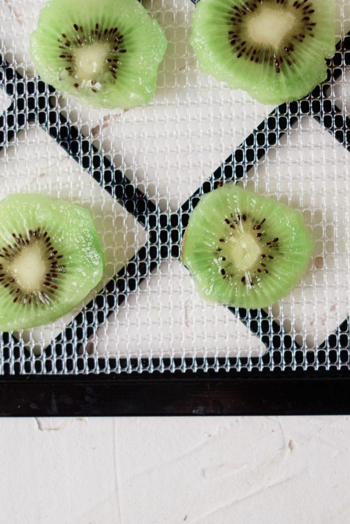 Sliced kiwi arranged on a dehydrator tray.