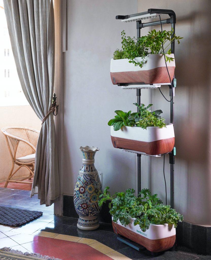 Indoor herb garden with built in artificial lighting.